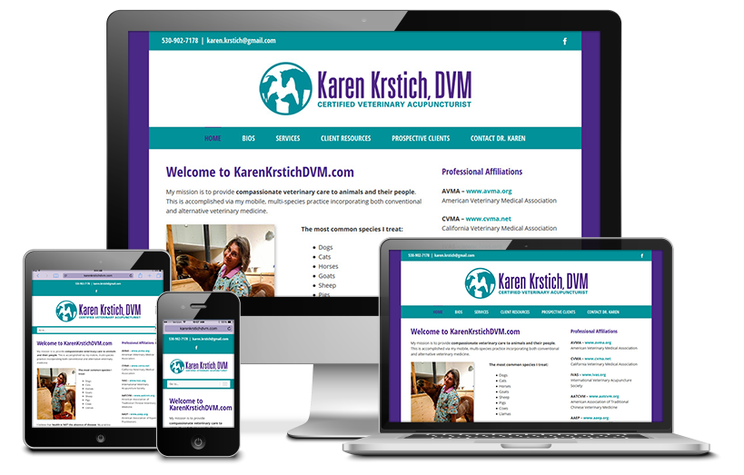 Karen Krstich DVM Website Redesign